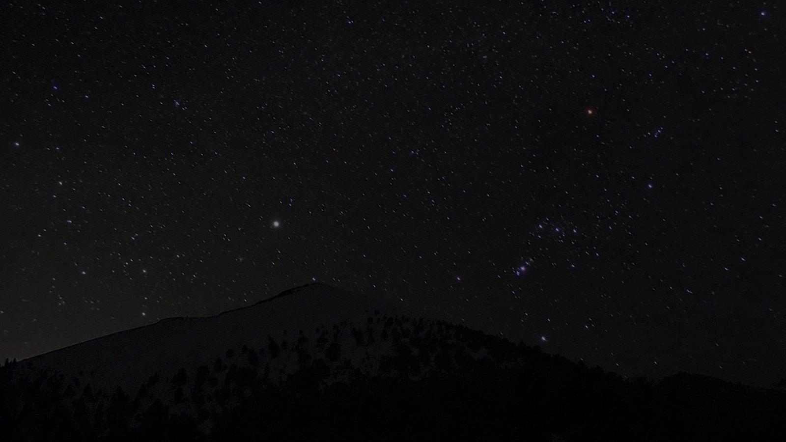 Lajanje na zvezde