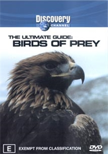 Discovery: The Ultimate Guide - Birds Of Prey