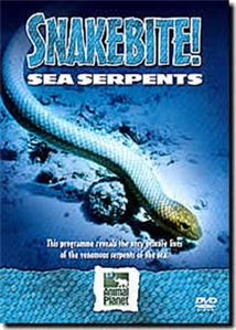 The Real Sea Serpents