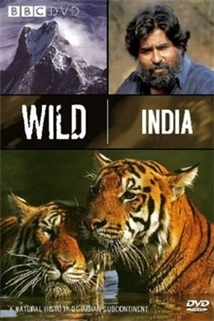 Land of the Tiger