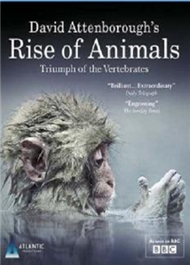 Rise of Animals: Triumph of the Vertebrates