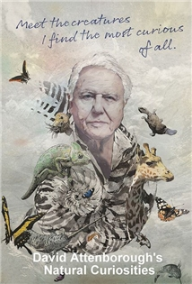 Natural Curiosities Aka David Attenborough's Natural Curiosities