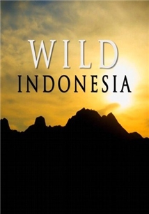 Destination Wild: Indonesia