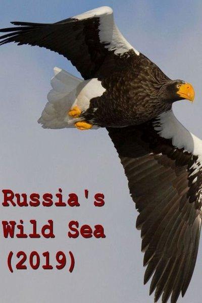 Russia's Wild Sea