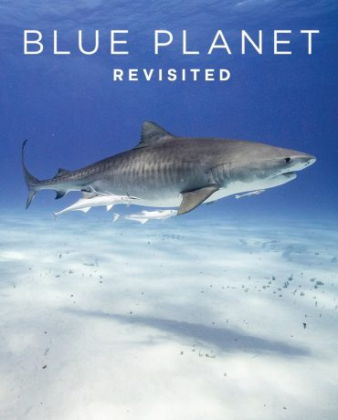 Blue Planet Revisited