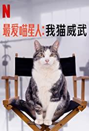 Poeslief: een ode aan de kat Aka Kitty Love: An Homage to Cats